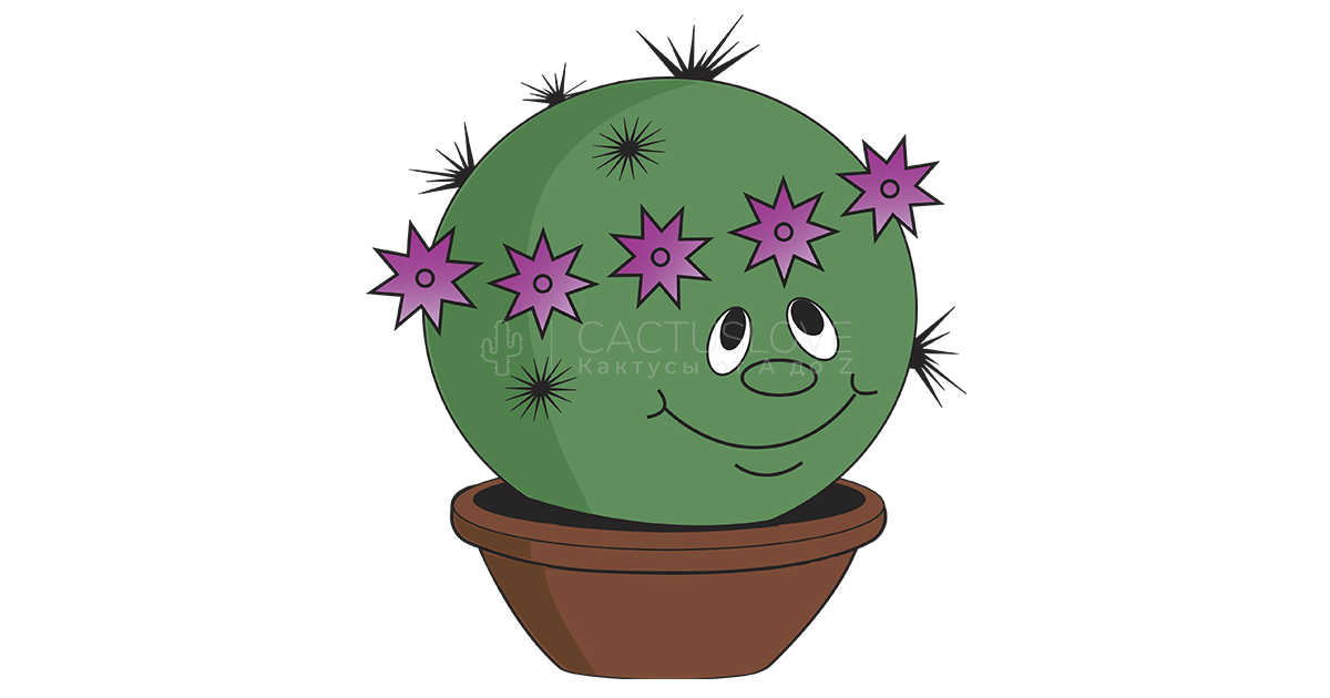 (c) Cactuslove.ru